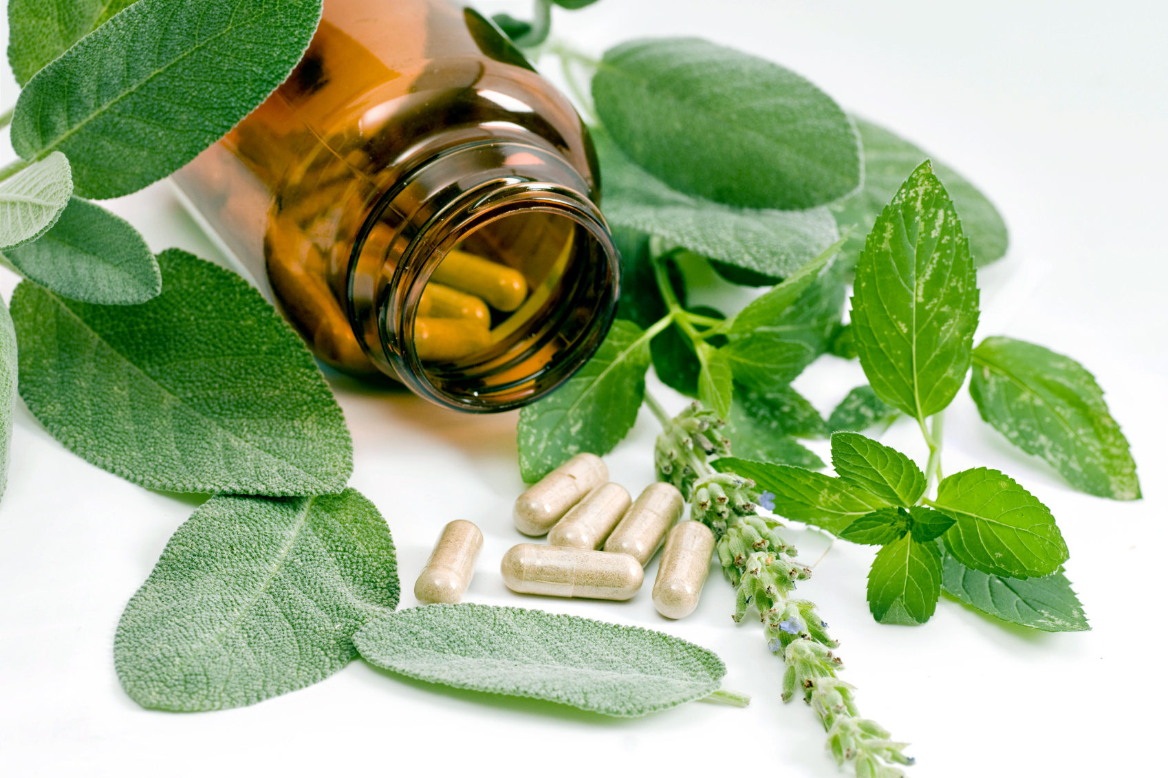 The Benefit of FDA Dietary Supplements in Your Life